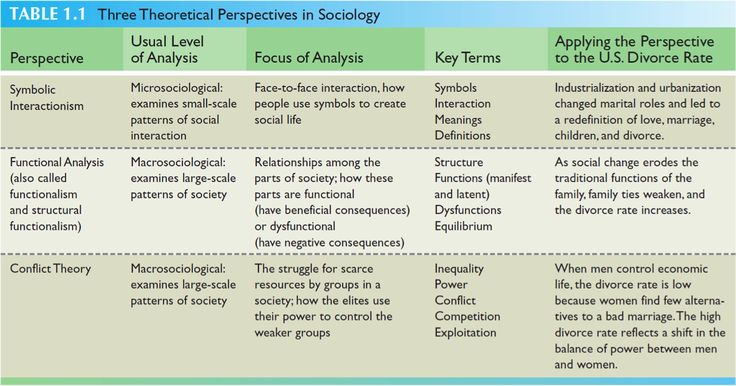 functionalist theories for the orthodox sociologist sociology essay The structural theory of functionalism essay 640 words 3 pages in social science, functionalism is the theory that put pressure on the dependence of the patterns and institutions of our society and her interaction by preserving her cultural and society unity.