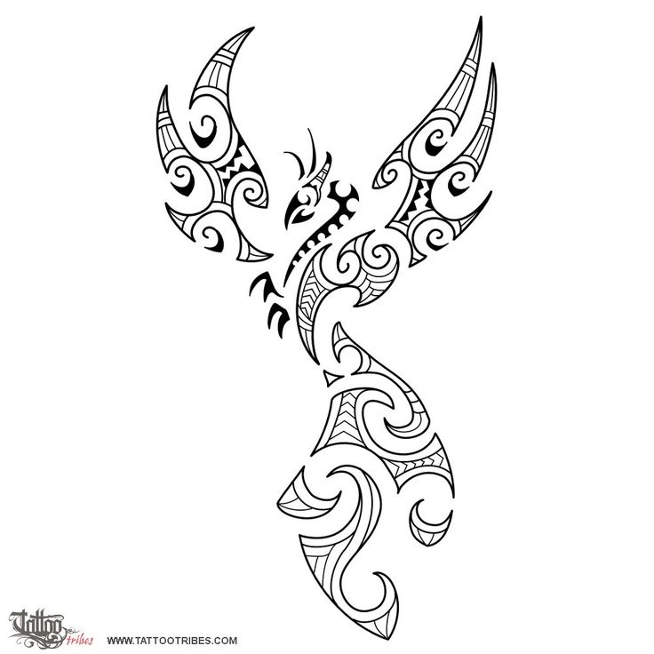 Maori style phoenix    The phoenix is a mythical bird that, according to the legend, dies in fire when it gets old to be born young again from its ashes . It´s on this account a symbol of rebirth and eternity. Originally the phoenix was associated to the sun, dieing every night in the fire of the sunset to be born again on the following day.