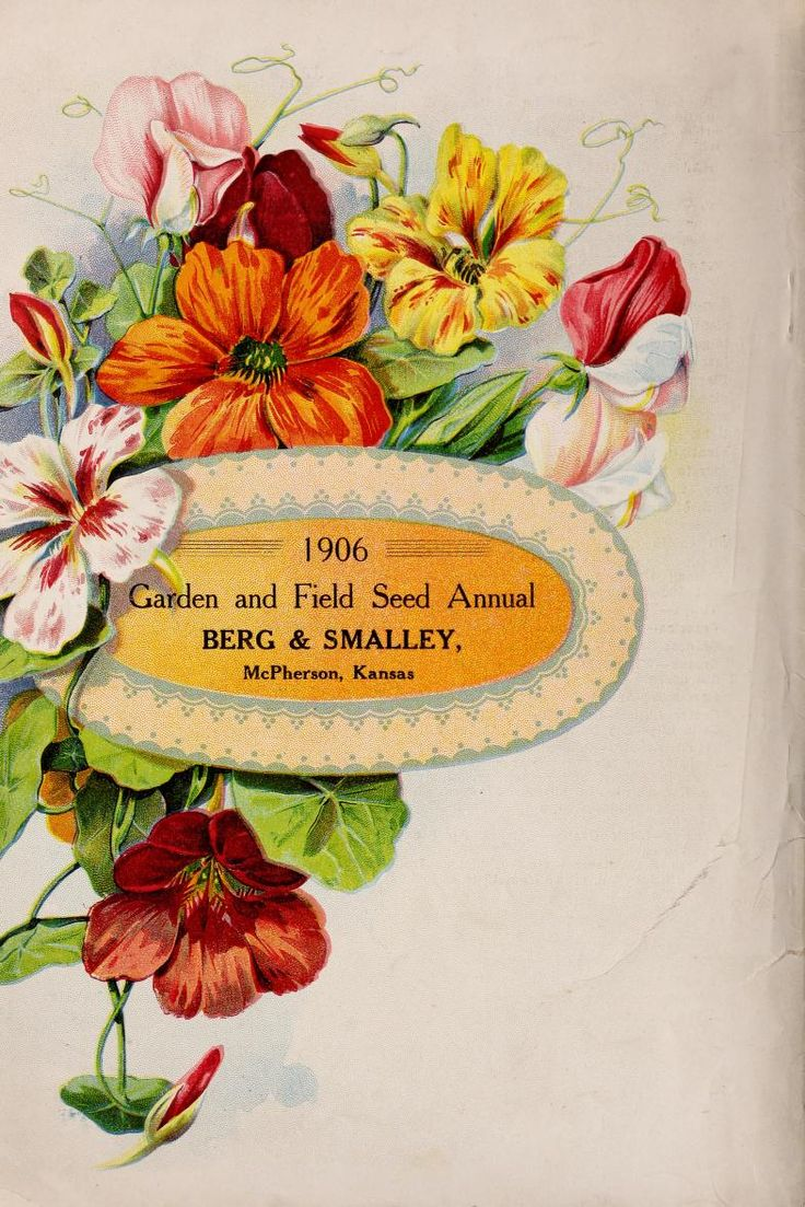 17 Best images about Vintage Illustrations Garden Catalogues on
