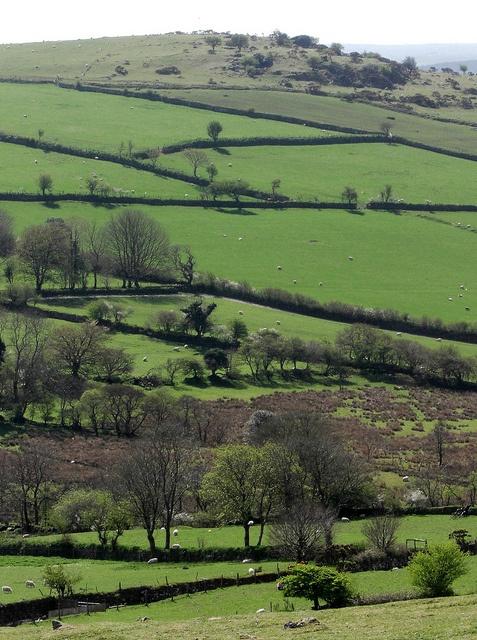 Peter Tavy Sharp Tor on Dartmoor, Devon