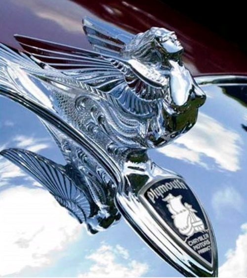25 Best Ideas About Car Brands Logos On Pinterest: Best 25+ Car Emblem With Wings Ideas On Pinterest