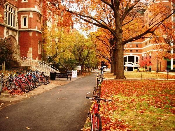 1000 Images About Universities Colleges On Pinterest