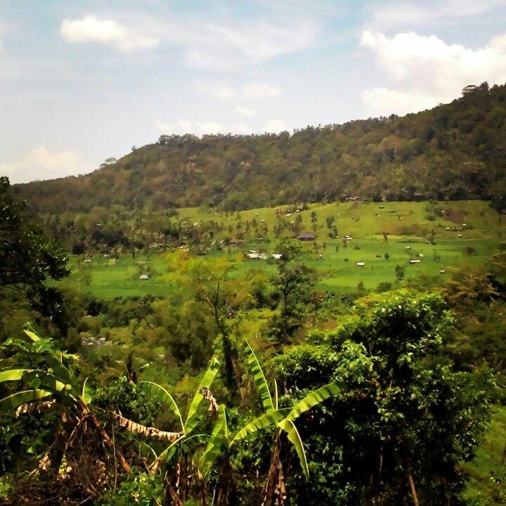 Sedimen village Bali Indonesia.