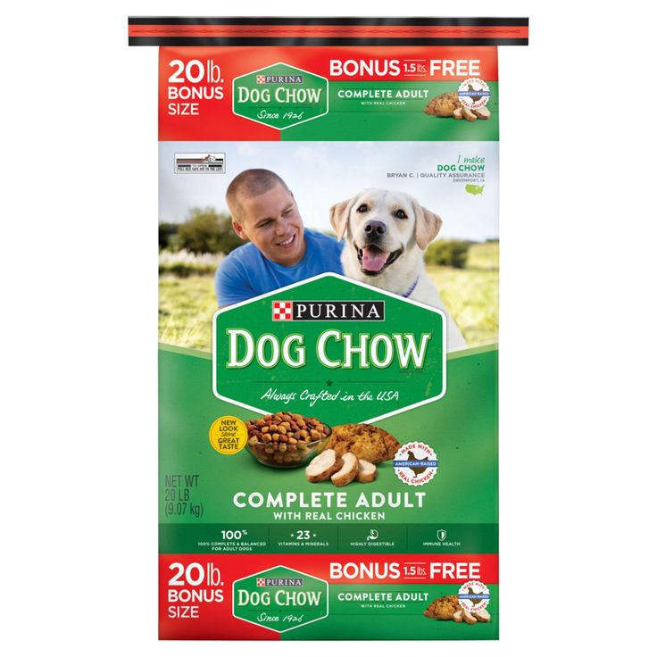 Purina Dog Chow Complete Adult Dry Dog Food - 18.5lbs