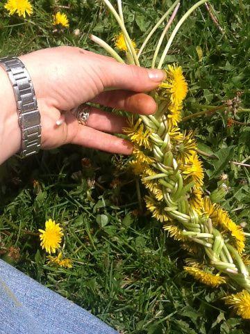 make a dandelion crown/garland