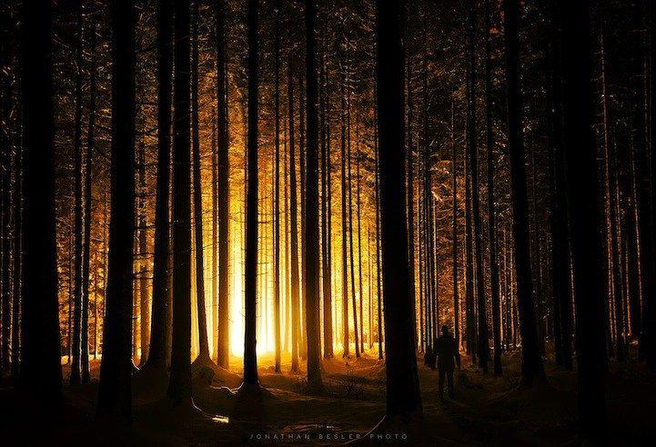 Eerder schreven over dit magische bos in België, maar ook bij onze Duitse buren beschikken ze over een schitterend woud: het bos van Bavaria. In 1970 werd