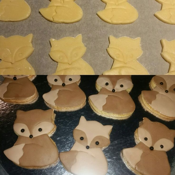 vossen koekjes