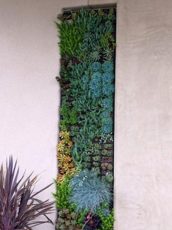 this can be adapted: Succulent, Idea, Debora Carl, Living Wall, Carl Landscape, Green Wall, Landscape Design, Vertical Gardens, Wall Garden