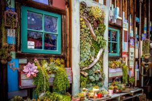 Stop in for a cup of coffee at a succulent fantasy land featuring a delightful array of plants all growing in unique containers, from old tennis shoes to hanging lanterns. This charming café may be one of a kind.