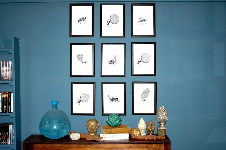 Range of framed Hand-drawn botanical bugs