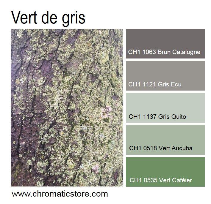Le vert dans ses versions p les gris es d riv es de la mousse se marie l gamment des notes - Mousse dans les urines ...