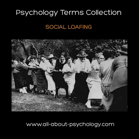 the history of social psychology Scribd is the world's largest social reading and publishing site.