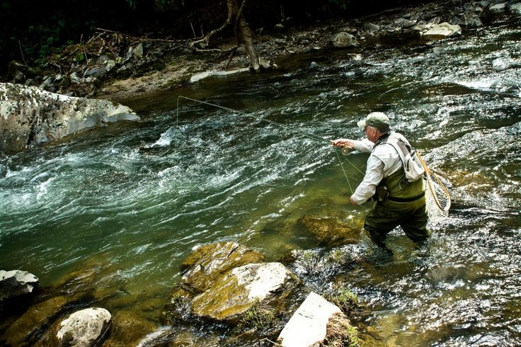 290 best fly fishing dreams group board images on for Fly fishing 101