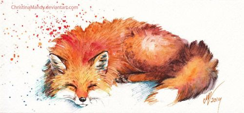 fox watercolor illustration - Поиск в Google