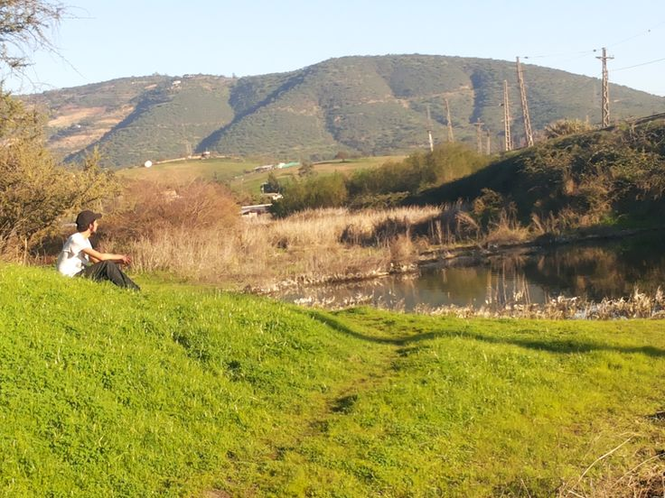 """Pantano en la hondonada, también conocido como: """"Los Perros"""""""