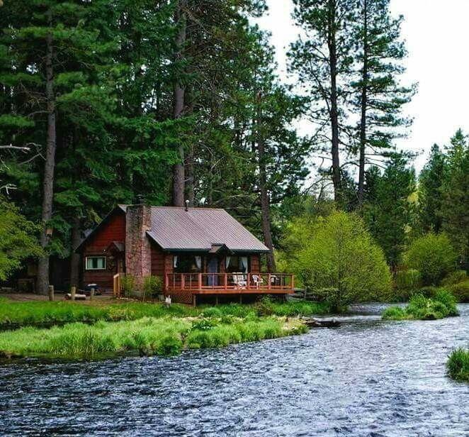Best 25 Secluded Cabin Ideas On Pinterest Little Cabin