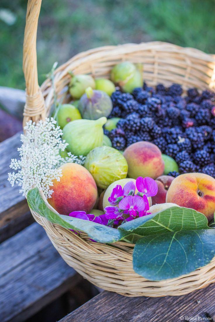 Frutti selvatici