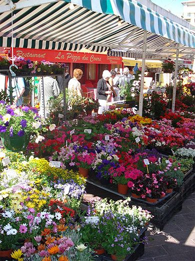 I'd like to get my spring flowers here--Marché aux fleurs, Nice