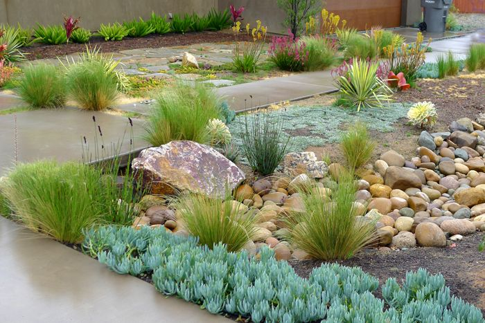 dry riverbed landscape - Google Search. Maybe add to outside edge?