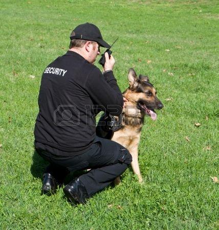 Guardia de seguridad con un perro. Security.
