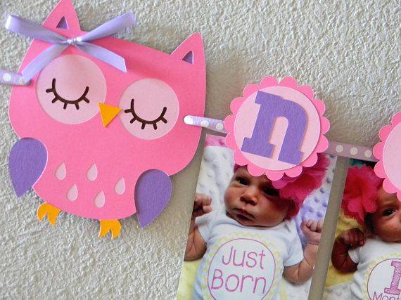 Owl First Birthday Party First Year Photo Clothespin Banner