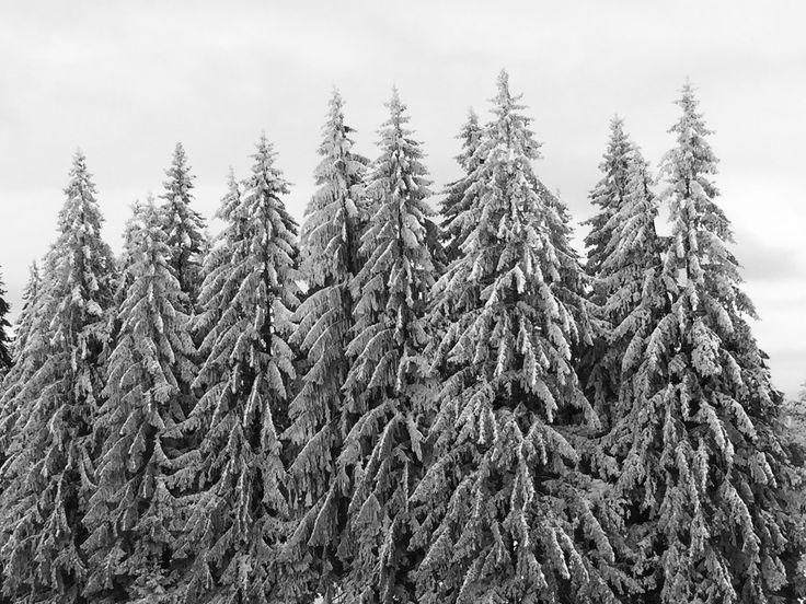 #Romanian #winter