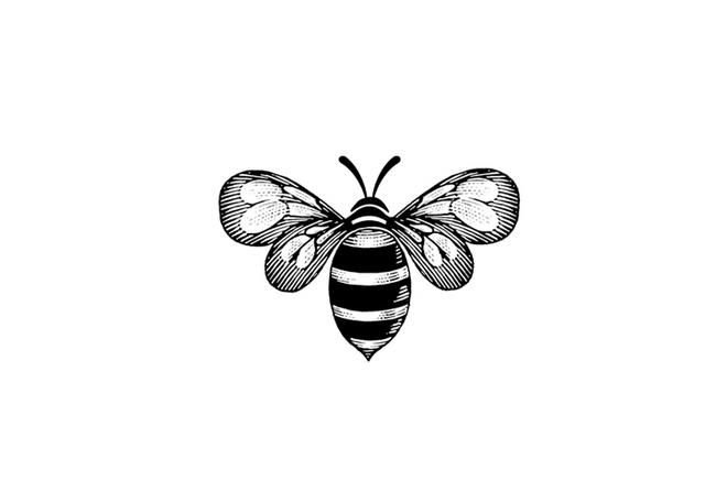 Steve Nobel Illustration—Bee Icon