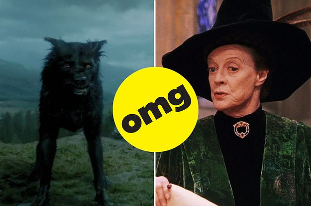 Answer Some Harry Potter Questions And We Ll Tell You Your Animagus Animal Harry Potter Questions Harry Potter Quizzes Harry Potter Facts