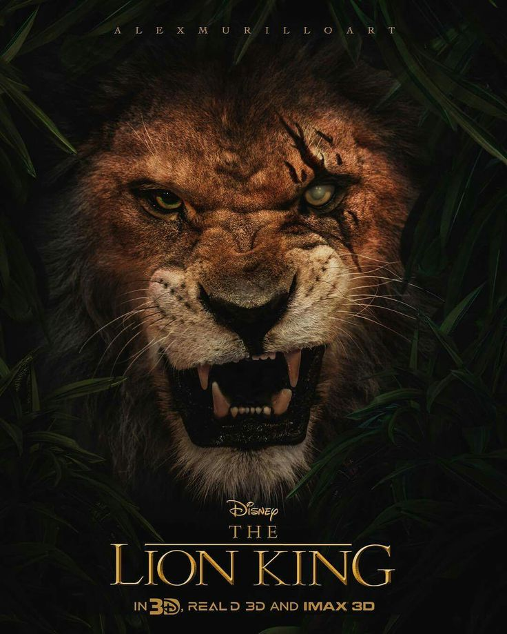 love will find away lyrics lion king Watch the lion king full movie online stream the lion king the 1994 best original song for can you feel the love song lyrics will make you.