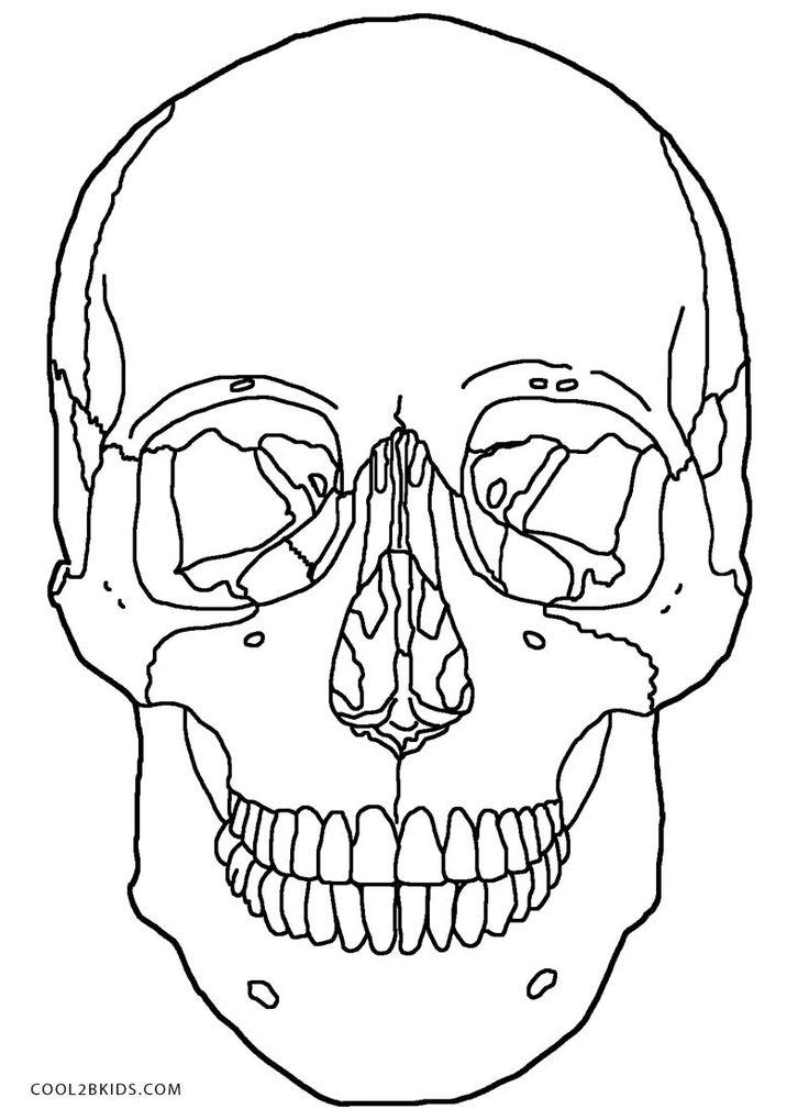 Anatomy Skull Coloring Pages   Printable Sugar Skulls Coloring ...