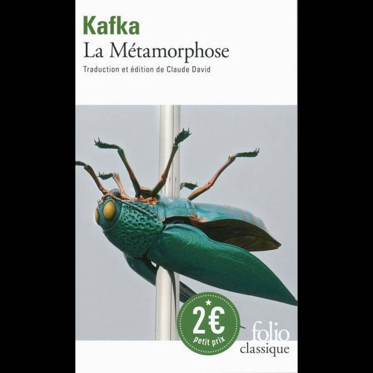« La métamorphose », de Franz Kafka