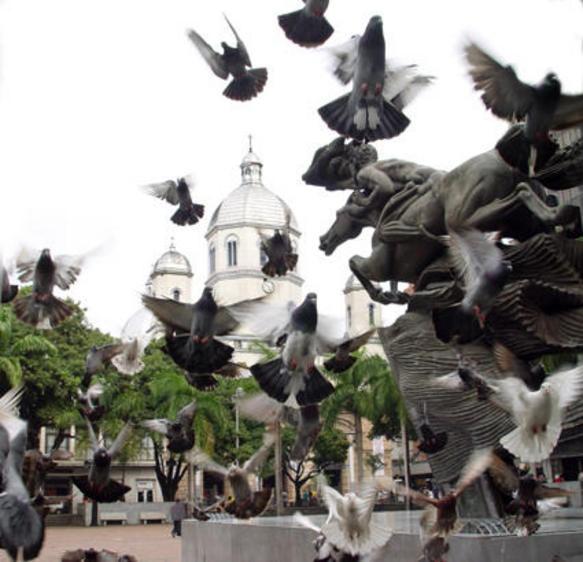 Plaza de Bolivar Pereira, Risaralda