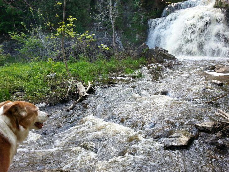 At the bottom of Jones Falls, Owen Sound, Ontario