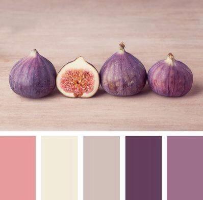renk-paletleri