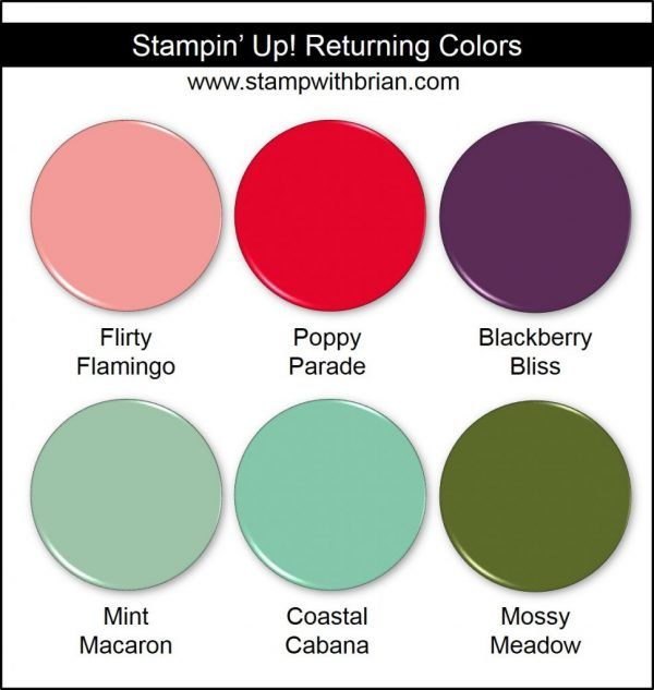Introducing Stampin Up S 2018 2020 In Colors Color Good Color