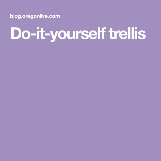 Do It Yourself Trellis Trellis Florida Landscaping 400 x 300