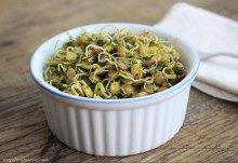 germogli di lenticchie verdi con prezzemolo e aglio