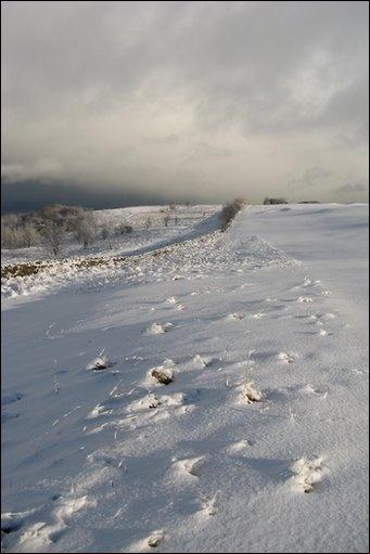 Cleadon Hills, Photo: Gill Baines