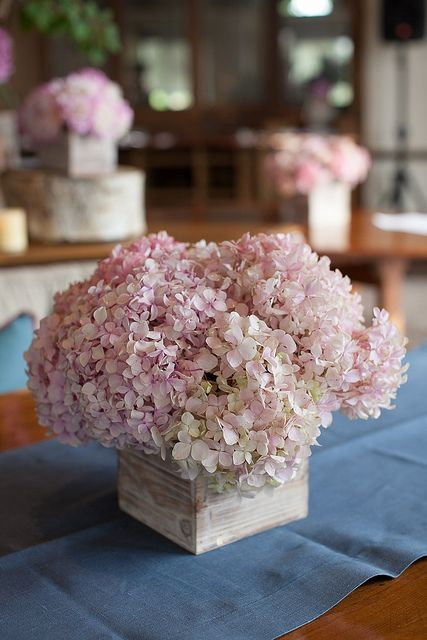 pink hydrangea in wooden box for Summer Aspen wedding