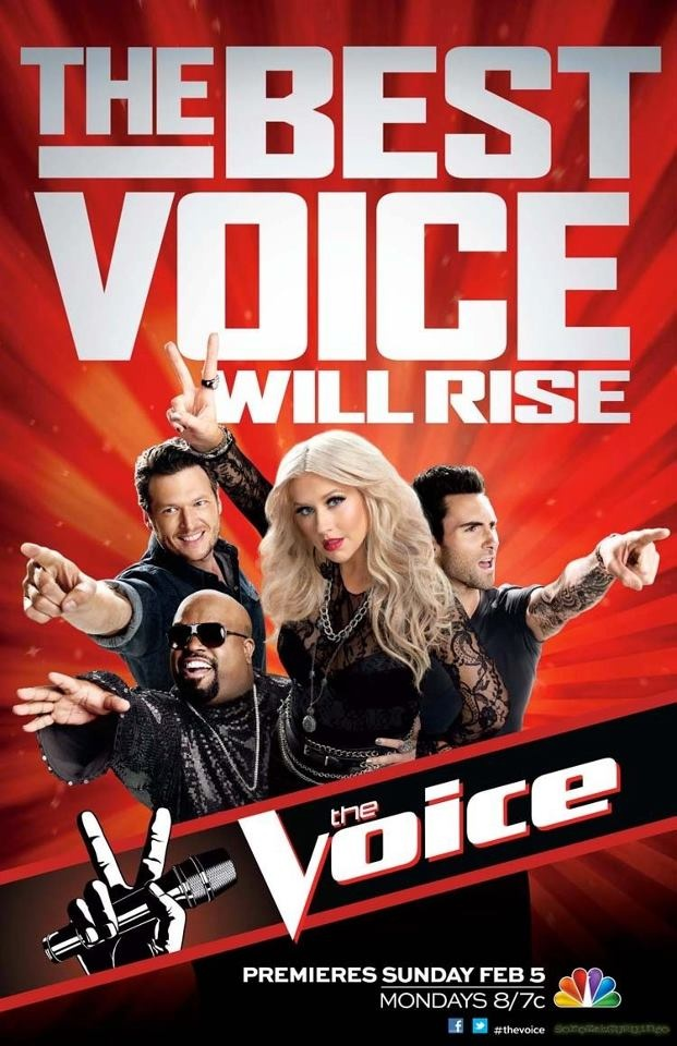 The Voice: Another great reality TV show.