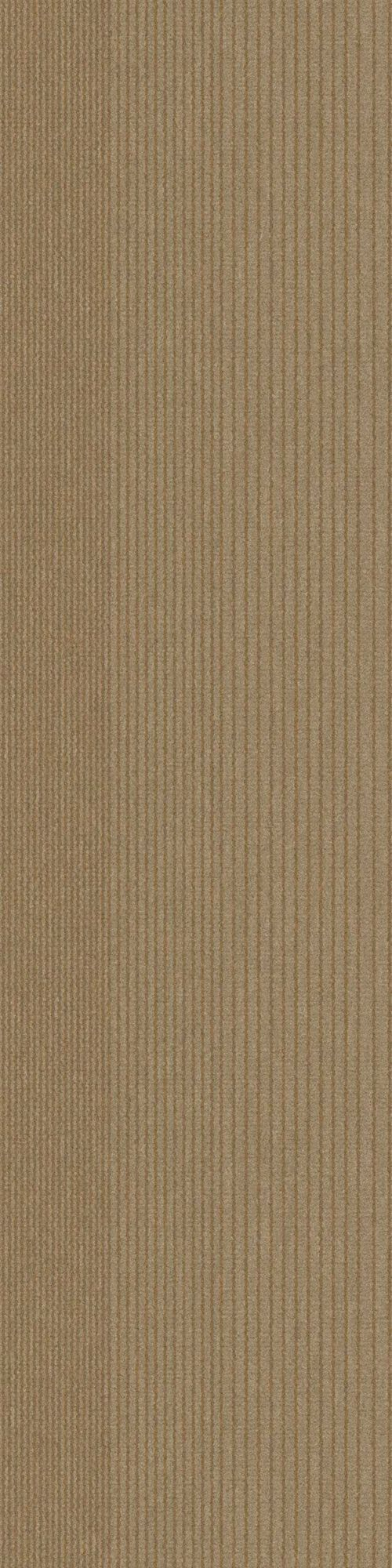 Interface carpet tile: B703 Color name: Sand Variant 6