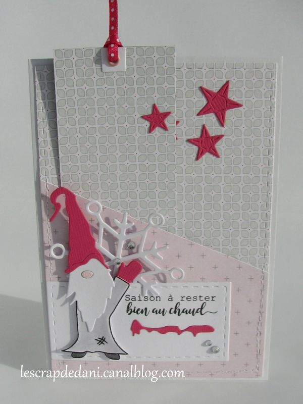 dani carte combo rose f-gris-blanc5