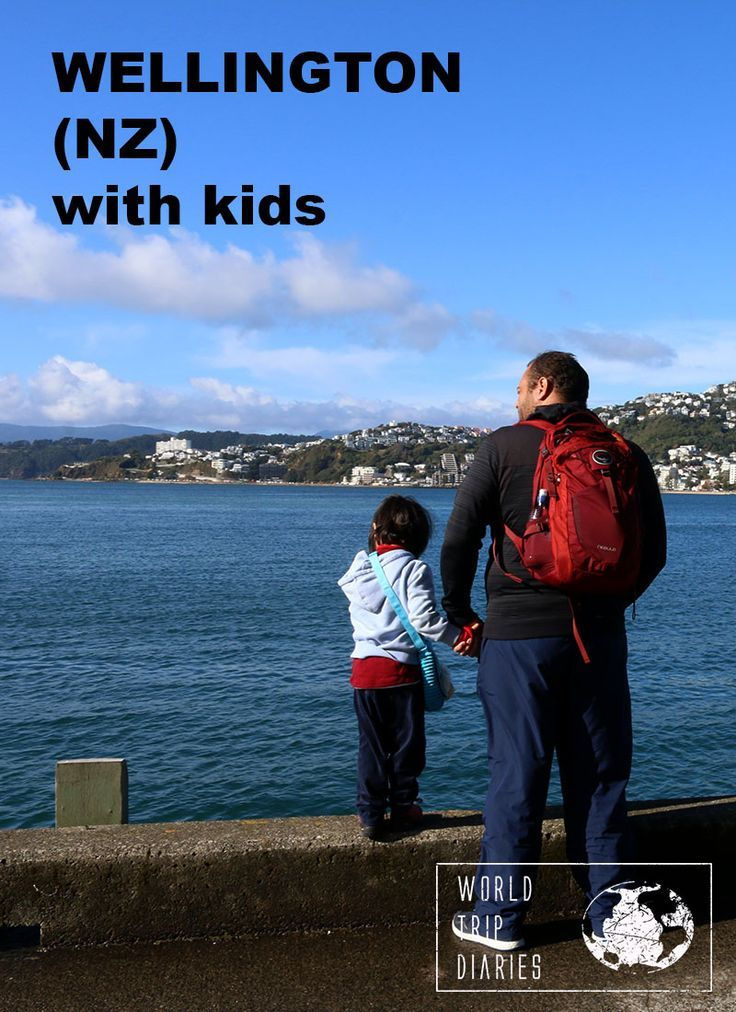 What to do in Wellington with kids! - World Trip Diaries