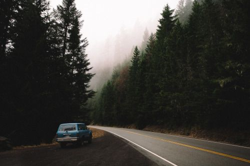 Longing for a road trip on a foggy, cool day
