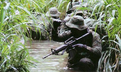COMANF - Comandos Anfíbios - Corpo dos Fuzileiros Navais - Marinha do Brasil