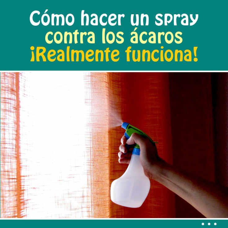 M s de 25 ideas incre bles sobre spray contra acaros en for Como eliminar los acaros de la casa