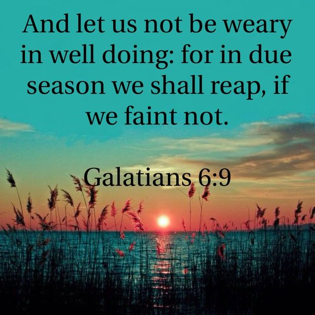 """And let us not grow weary of doing good, for in due season we will reap, if we do not give up."" ‭‭Galatians‬ ‭6:9‬ ‭ESV‬‬"