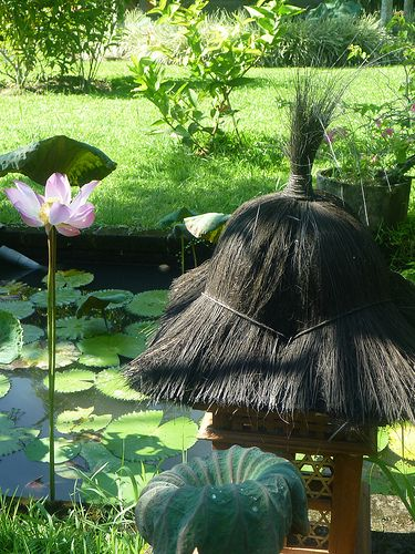 Board Beauty Indonesia - From http://pasutri.us/tisu-majakani.html
