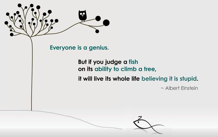 Everyone is a genius, but if you judge a fish on its ability to climb a tree, it will live its whole life believing it is stupid.   - Albert Einstein