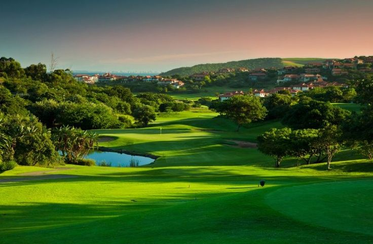 Just what you need! A perfect mix of golf and wildlife... Experience the fantastic Zimbali Golf Estate, then head to Thanda Private Game reserve for an epic safari. Customise your tour & book 100% online, Skype, 📞 toll-free for more info >>